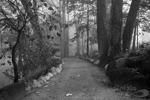 Autumn Path - Black & White